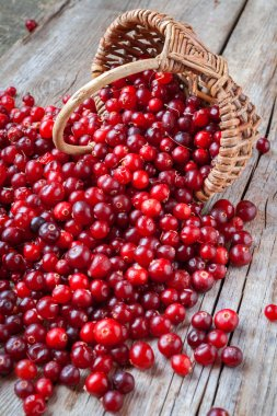 Fresh red cranberries, berries and  basket on old table