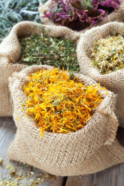 Healing herbs in hessian bags, herbal medicine.