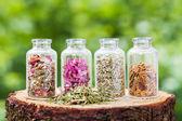Fényképek A gyógyító gyógynövények fa csonkot a zöld háttérben üvegek