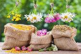 Léčivé byliny hrozny a zkřížili pytle s sušených rostlin