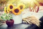 Slunečnice v kbelíku, uši pšenice a hrnec s rostlinou na stole.