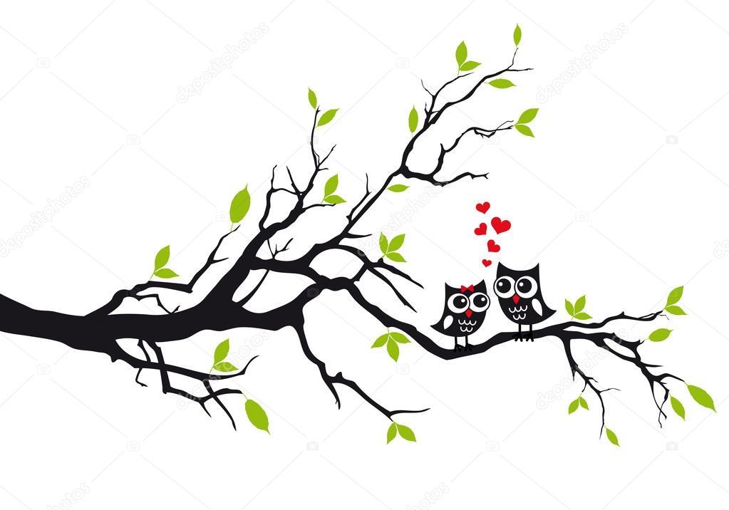 Dibujos Buhos Enamorados Blanco Y Negro Buhos En El Amor En El