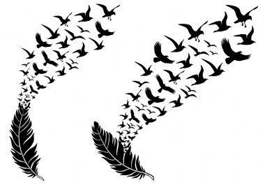 Feathers with free flying birds, vector illustration for a wall tattoo stock vector