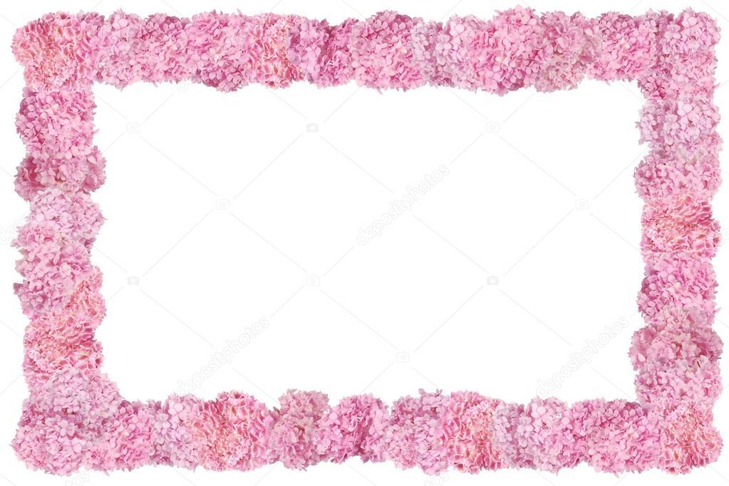 Beautiful Pink hydrangeas flower frame. — Stock Photo © akova777 ...