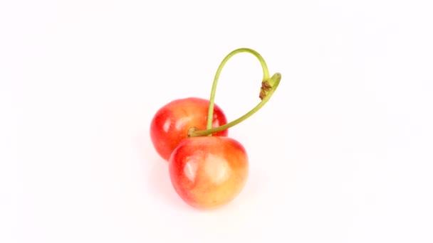 Két cseresznye szerelem jel. Édes cseresznye szerelem jel fehér háttérrel. Két szív alakú bogyó összefonódó szárakkal. 4K UHD videó felvétel 3840X2160.