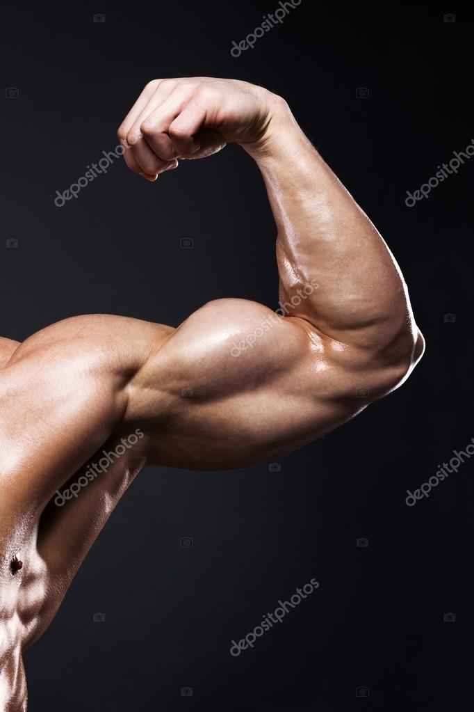 muscular brazo masculino humano de vista frontal — Foto de stock ...