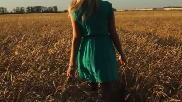 Beautiful girl running on sunlit wheat field. Freedom concept. Happy woman having fun outdoors in a wheat field on sunset or sunrise.