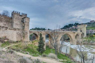 Alcantara bridge at Toledo, Spain