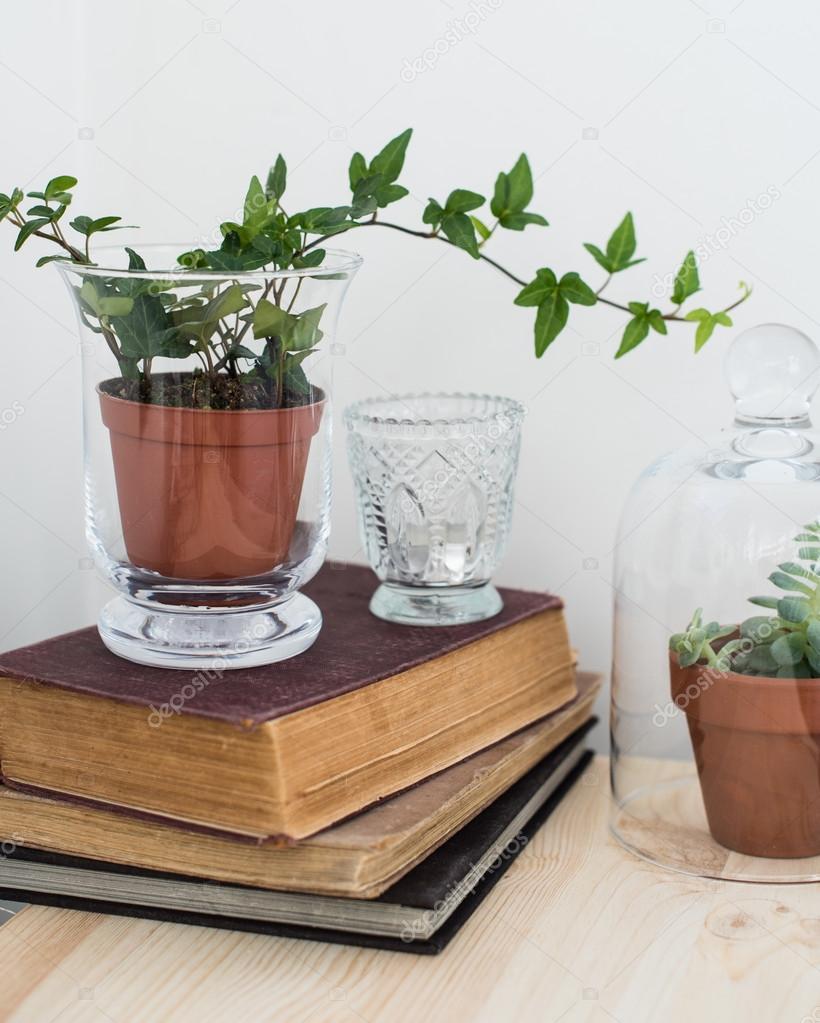 decoracin hogar con estilo estilo vintage libros viejos las plantas verdes y objetos decorativos en una tabla por la pared blanca u foto de manera