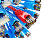 Fotografie LAN-Netzwerk-Anschluss Ethernet Rj45-Kabel. Wahl des Anbieters