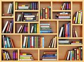 Vzdělávací koncepce. Bppks a učebnic na polici