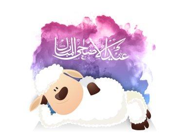 Baby Sheep for Eid-Al-Adha Mubarak.