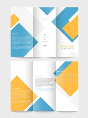Tri fold brochure, template or flyer for business.