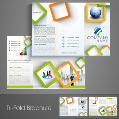 Professional business trifold flyer.