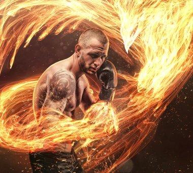 Fighter with phoenix fire bird