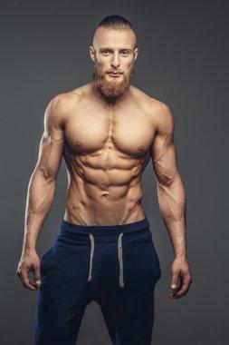 Shirtless muscular guy posing