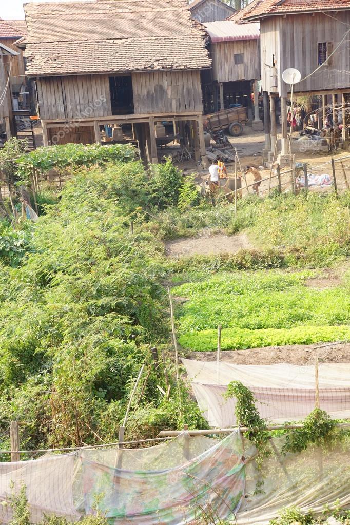 Khmer Haus Auf Stelzen Gebaut Stockfoto C Cascoly 67007003