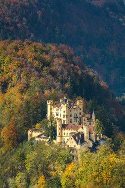 Schwangau castle in Germany