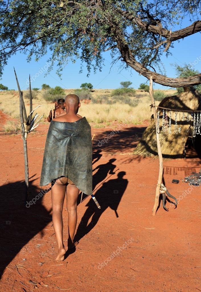 ナミビアのカラハリ砂漠のブッシ...