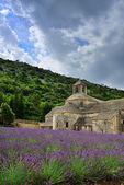 klášter senanque