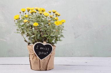 I miss you - beautiful  flowers in pot with message card