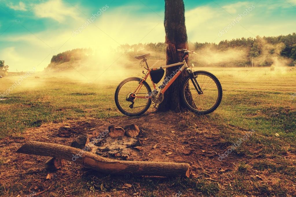 Camping  - mountain bike standing near the tree on misty sunrise