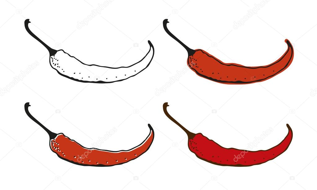 Chili pepper drawing