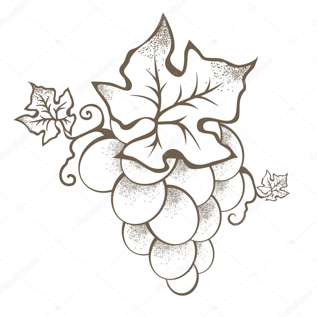Single Vintage Grape Branch