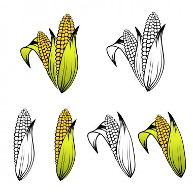 Corn Set Collection