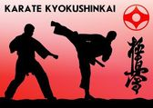 To je pravda. Taekwon-do. Kyokushinkai. Bojové umění