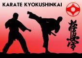 Karate. Taekwon-do. Kyokushinkai. Harcművészet.