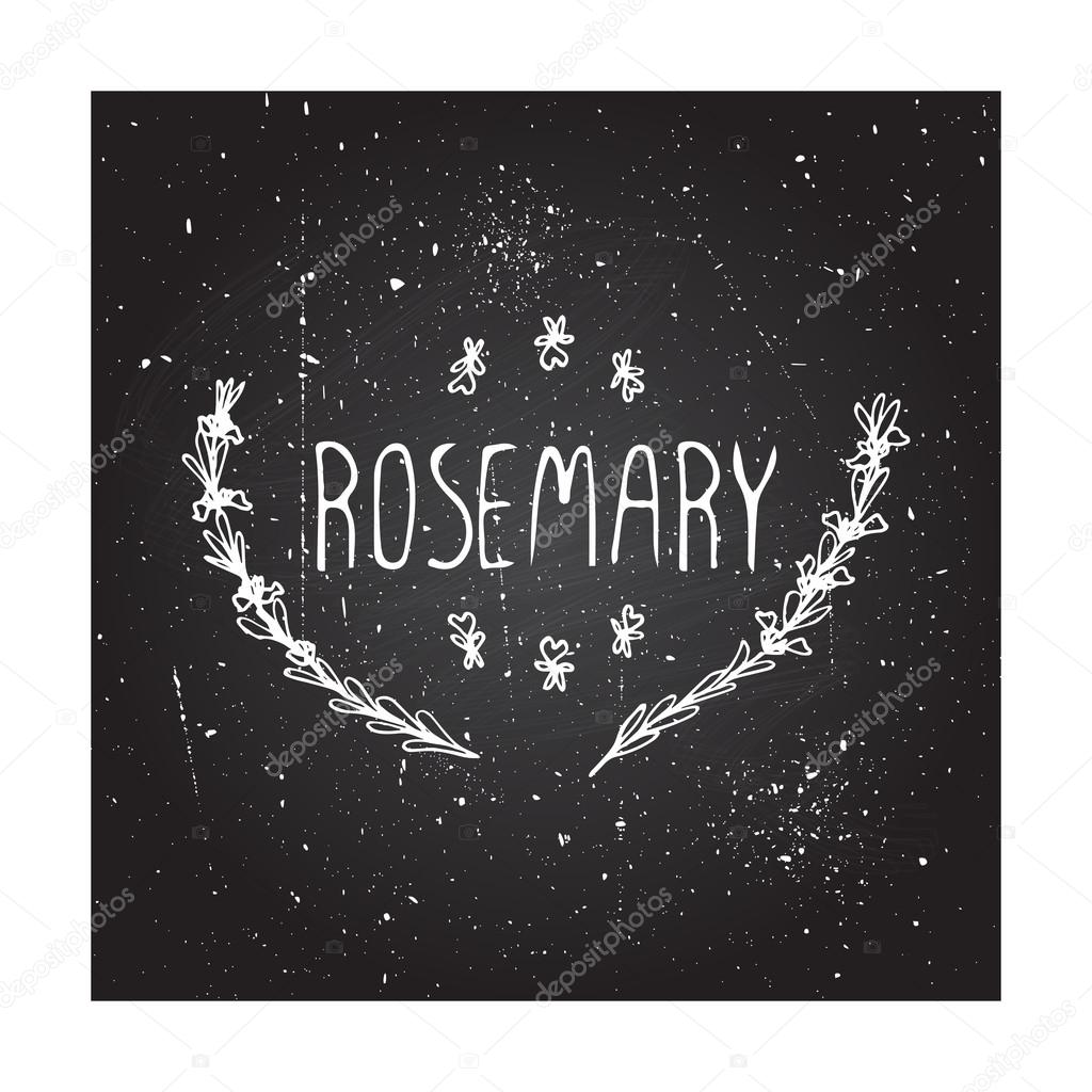 Herbs and Spices Collection - Rosemary