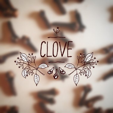 Herbs and Spices Collection - Clove