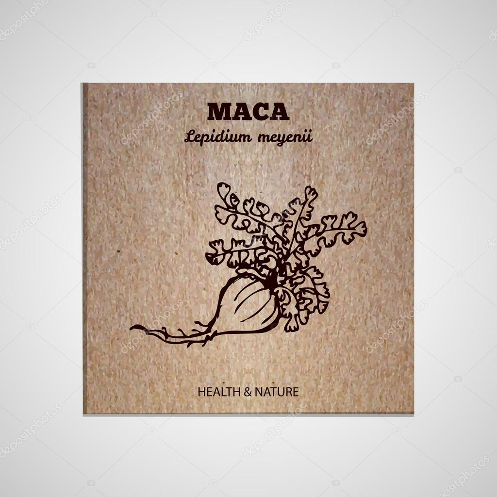 Herbs and Spices Collection - Maca