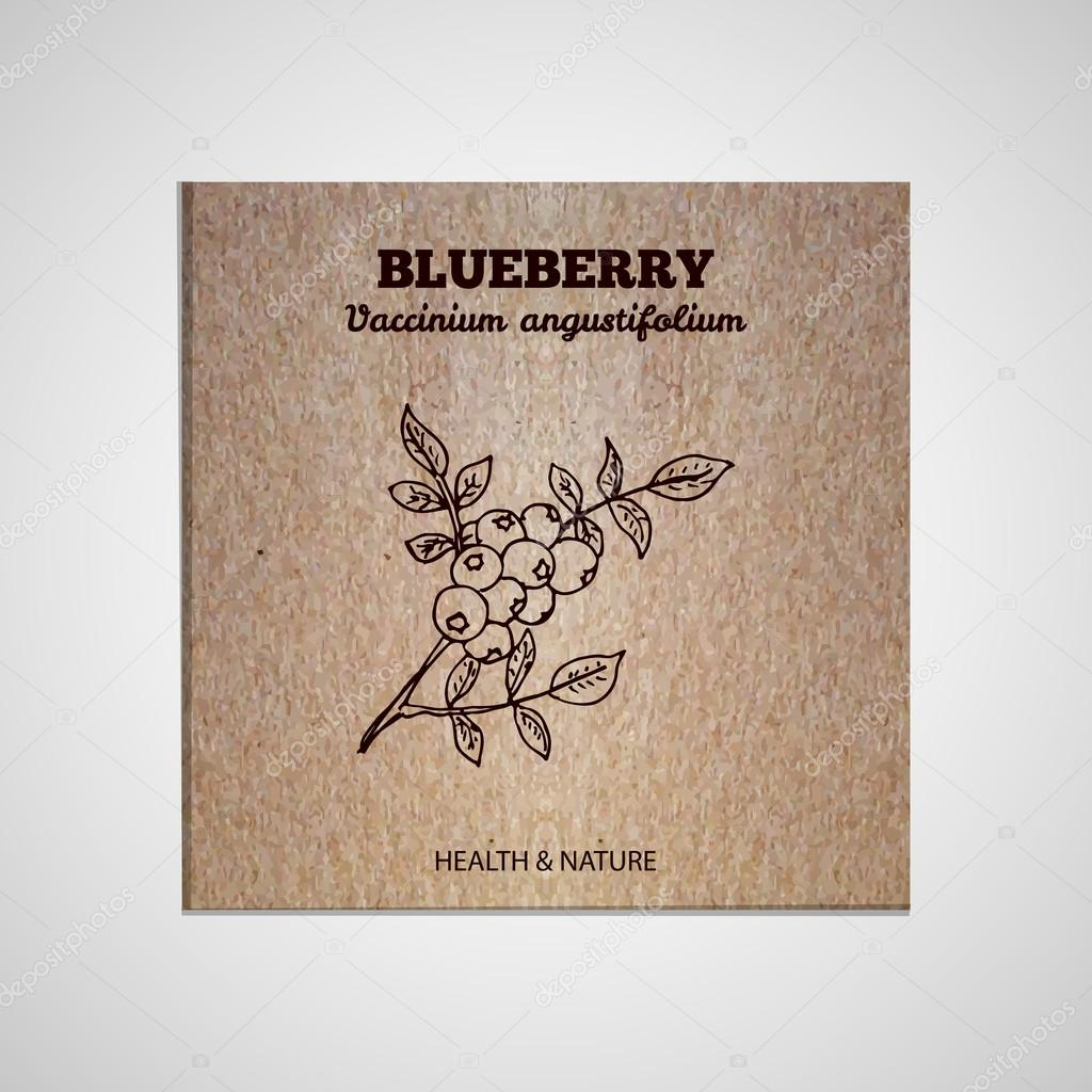 Herbs and Spices Collection - Blueberry