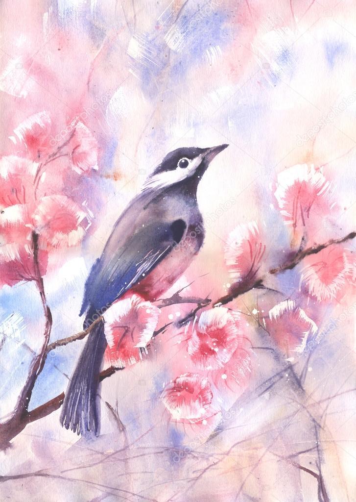 Sulu Boya Bir Dalda Kuş çizim Stok Foto Alkirdep 77376390