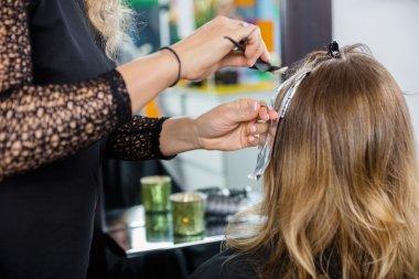 Hairdresser Highlighting Clients Hair In Salon