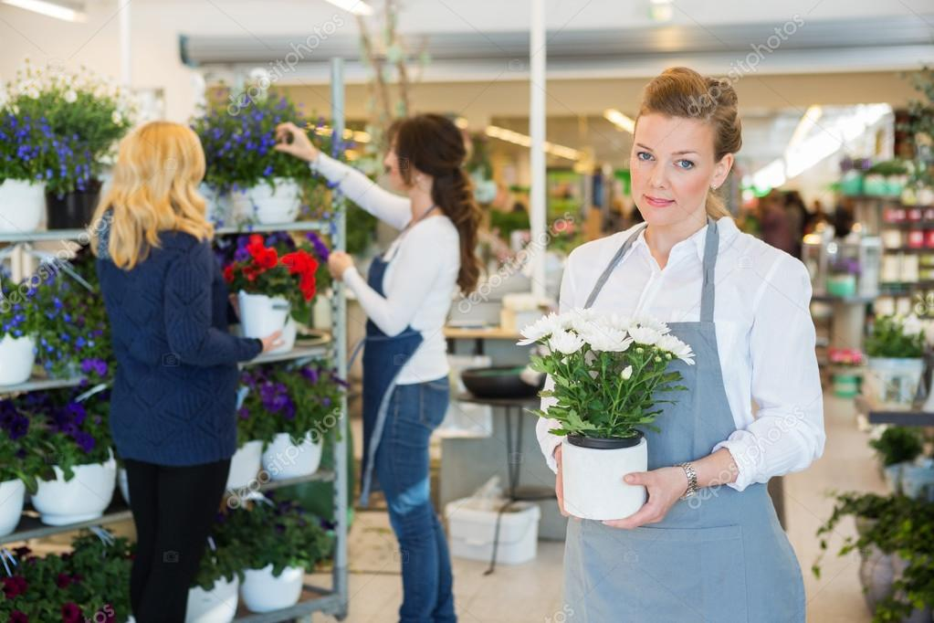 Salesgirl Holding Flower Pot In Florist Shop
