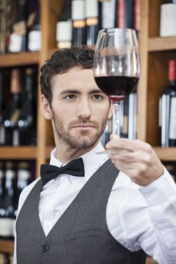 Confident Of Bartender Examining Red Wine