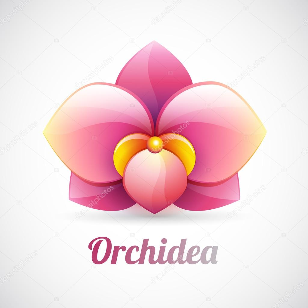 flower logo - pink orchid flower shape - vector icon isolated on