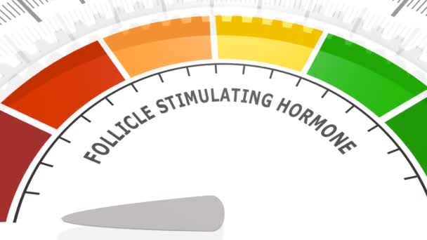 Follikulus stimuláló hormon