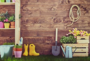 Gardening tools and on the grass