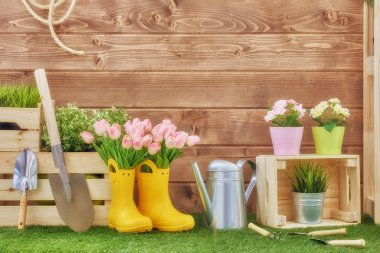 Gardening tools on the grass