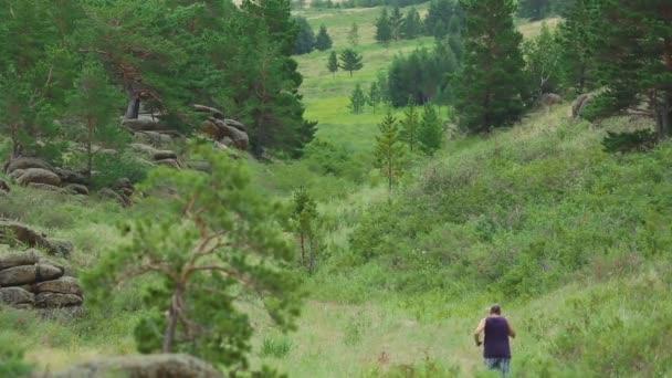 Horské údolí běhání
