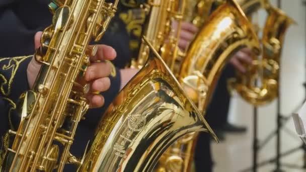Zenész játszik a szaxofon, Vértes
