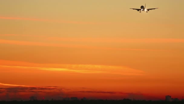 Morgenanflug