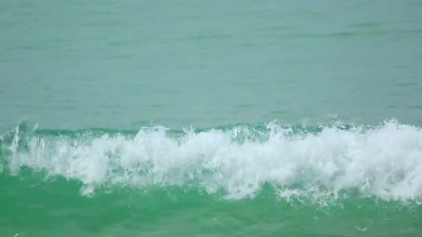 pláž vlny