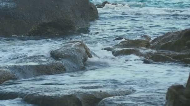 Türkiz gördülő hullám, lassú mozgás