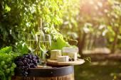 sklenice vína a staré barel