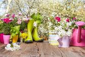 Fotografia Attrezzi da giardinaggio sulla tavola di legno